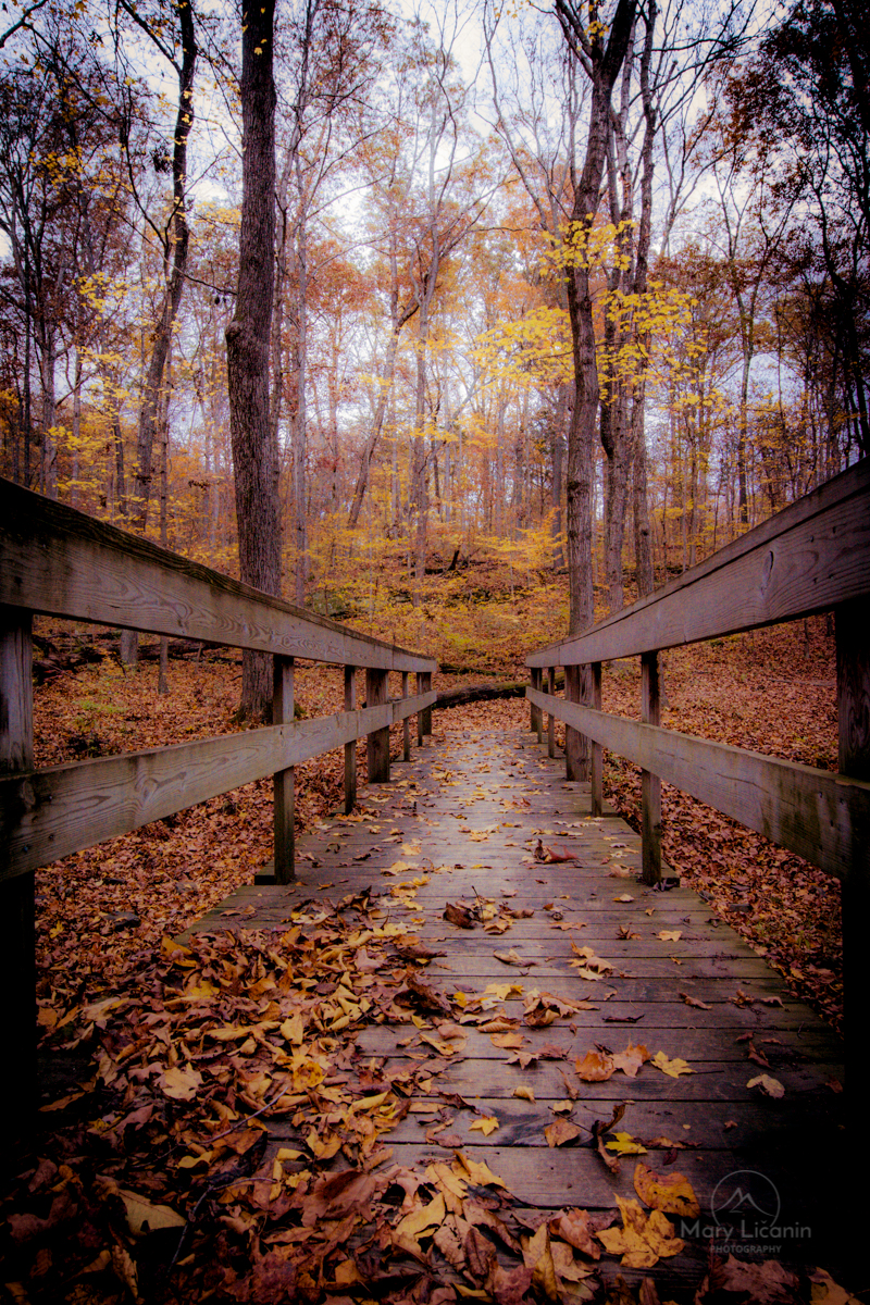 Pinhole Bridge by Mary Licanin Fine Art Photography